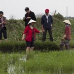 2015 Vietnamfotos Ulz (748)